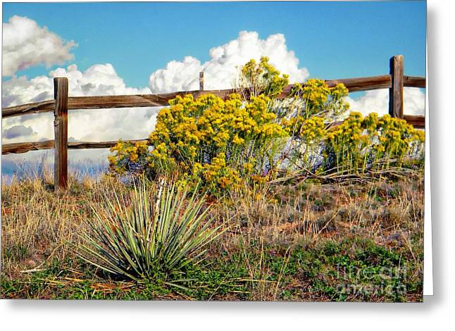 Fountain Creek Nature Center Greeting Cards - Nature Greeting Card by Michelle Frizzell-Thompson