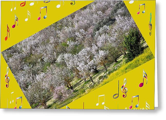 Star Valley Greeting Cards - Nature Music Greeting Card by Augusta Stylianou