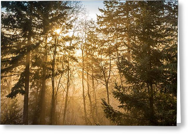Mystical Landscape Greeting Cards - Nature of Dreams Greeting Card by Pierre Leclerc Photography