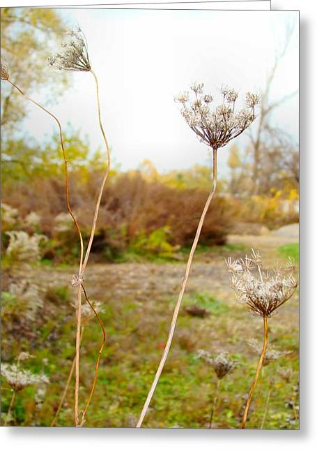 Pale Colors Greeting Cards - Nature Of The Fields Greeting Card by Gothicolors Donna Snyder
