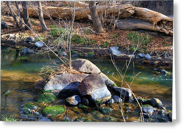 Granite Dells Reflections Greeting Cards - Nature on the rocks Greeting Card by Thomas  Todd
