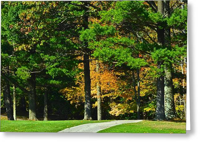 Cavern Greeting Cards - Nature Path Greeting Card by Frozen in Time Fine Art Photography