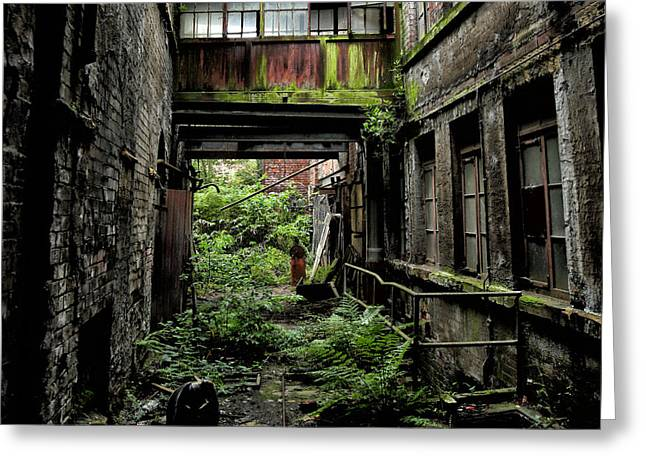 Atmospheric Greeting Cards - Nature reclaims derelict building Greeting Card by Russ Dixon