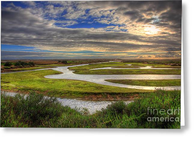 Ilha De Faro Greeting Cards - Nature Reserve Greeting Card by English Landscapes
