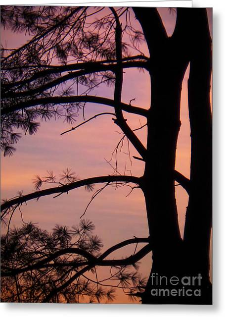 Bedroom Art Greeting Cards - Nature Sunrise Greeting Card by Charlie Cliques