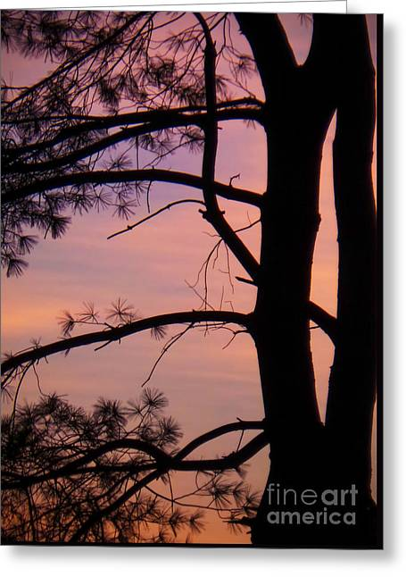 Nature Sunrise Greeting Card by Charlie Cliques