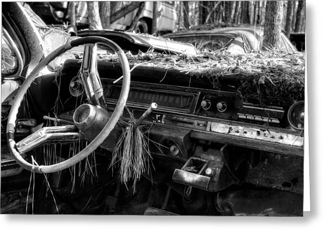 Take Over Greeting Cards - Nature Takes Over A Cadillac in Black and White Greeting Card by Greg Mimbs