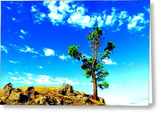Nature Greeting Card by Viren Rana