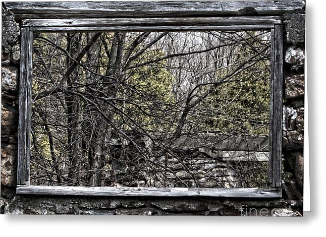 Wooden Building Greeting Cards - Nature Window Greeting Card by Miss Dawn