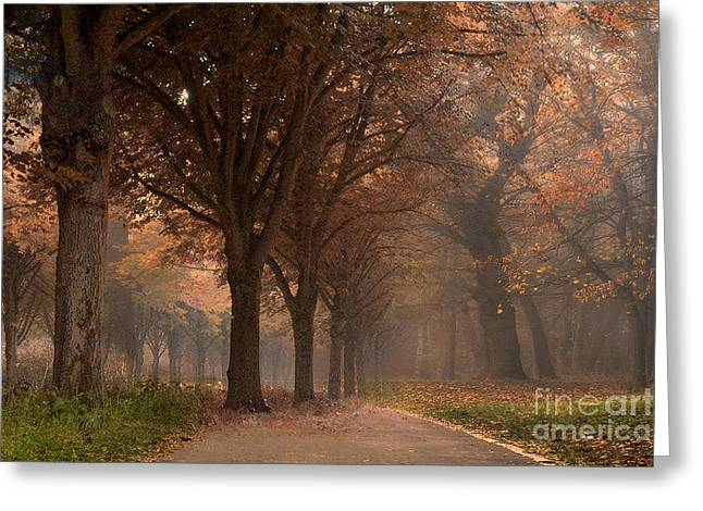 Surreal Dreamy Nature Photos Greeting Cards - Nature Woodlands Autumn Fall Landscape Trees Greeting Card by Kathy Fornal