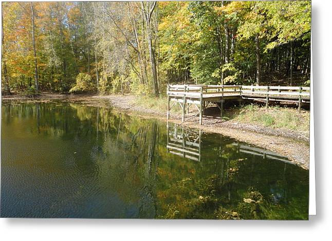 Photos Of Autumn Greeting Cards - Natures Balcony Greeting Card by Guy Ricketts