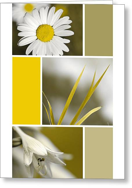 Nature's Beauty Golden Flowers Collage Greeting Card by Christina Rollo