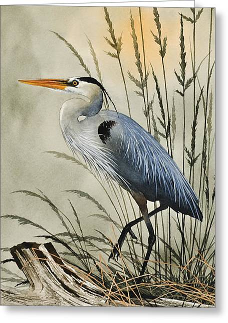 Heron Greeting Card Greeting Cards - Natures Beauty Greeting Card by James Williamson