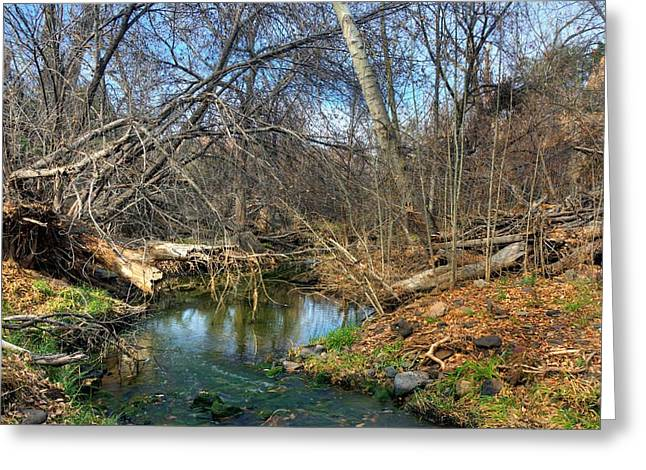 Granite Dells Reflections Greeting Cards - Natures Beauty  Greeting Card by Thomas  Todd