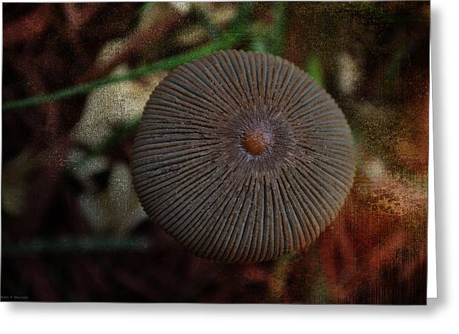 Nature's Button Greeting Card by Mary Machare