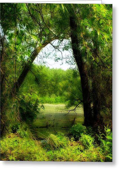 Lush Green Digital Greeting Cards - Natures Curtain Greeting Card by Gothicolors Donna Snyder