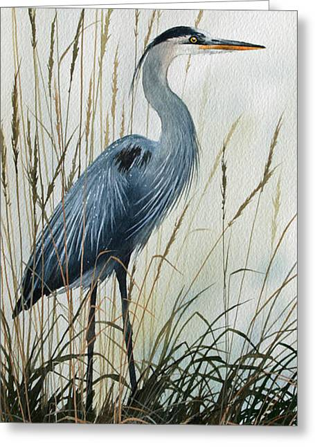 Shore Bird Print Greeting Cards - Natures Gentle Stillness Greeting Card by James Williamson