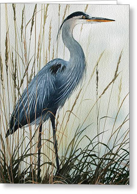 Natures Gentle Stillness Greeting Card by James Williamson