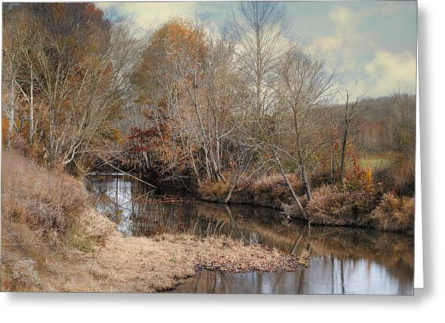 Autumn Scenes Greeting Cards - Natures Glory - Autumn Stream Greeting Card by Jai Johnson