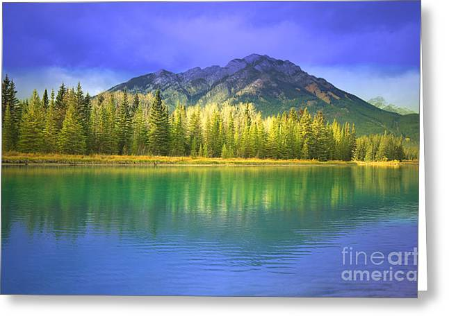 Snow Capped Greeting Cards - Natures Glow Greeting Card by Tara Turner