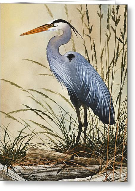Heron Greeting Card Greeting Cards - Natures Grace Greeting Card by James Williamson
