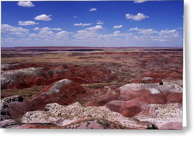 The Petrified Forest Greeting Cards - Natures Masterpiece Greeting Card by Kitrina Arbuckle