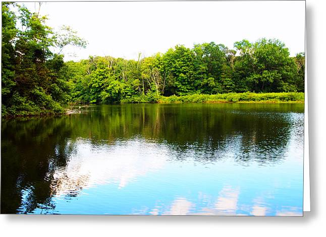 Natures Mirror Greeting Card by Deborah Fay