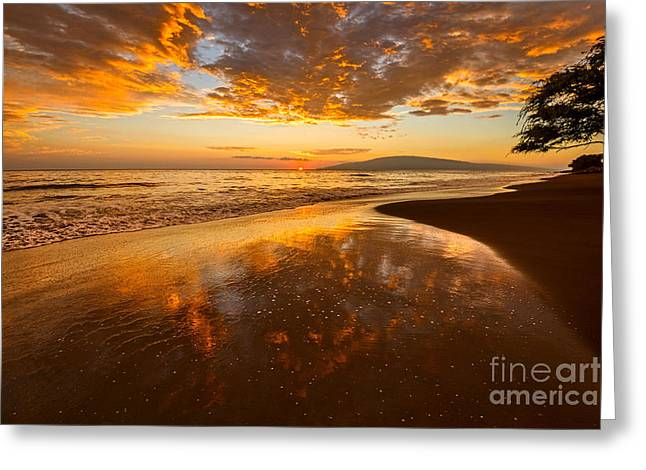 Lahaina Greeting Cards - Natures Painting Greeting Card by Jamie Pham