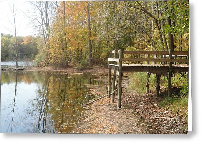 Photos Of Autumn Greeting Cards - Natures Patio Greeting Card by Guy Ricketts