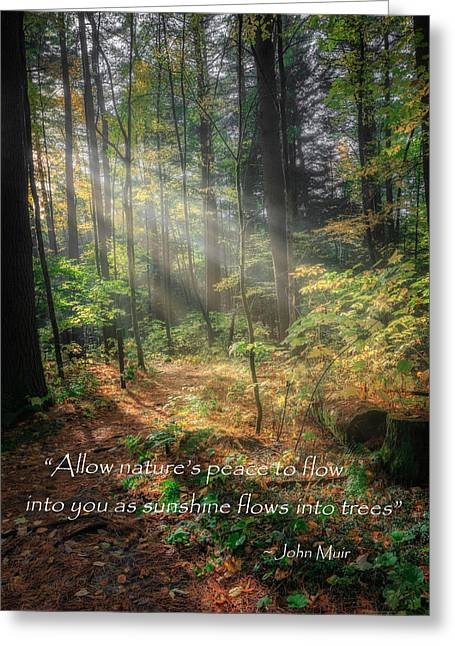 Quotes To Live By Greeting Cards - Natures Peace Greeting Card by Bill  Wakeley