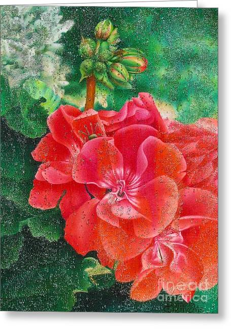 Red Geraniums Drawings Greeting Cards - Natures Jewels Greeting Card by Pamela Clements