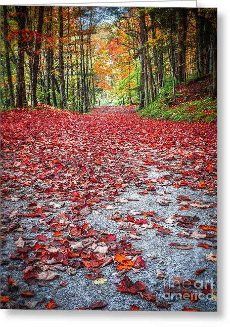 Red Carpet Greeting Cards - Natures Red Carpet Greeting Card by Edward Fielding