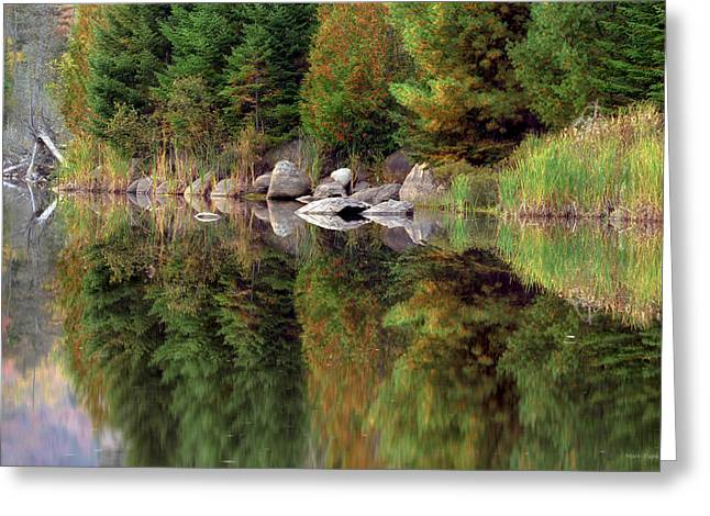Cloud Reflections In Water Greeting Cards - Natures Reflection Greeting Card by Mark Papke