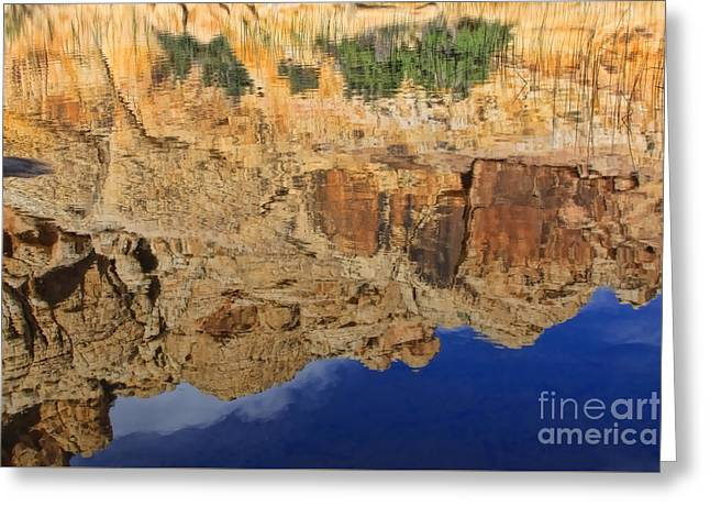 Tammy Espino Greeting Cards - Natures reflection Greeting Card by Tammy Espino