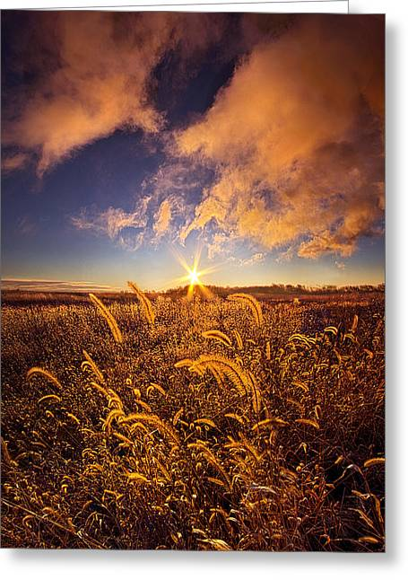 Hike Greeting Cards - Natures Romm With a View Greeting Card by Phil Koch