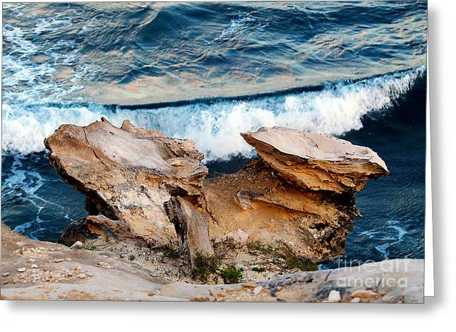 Lithified Greeting Cards - Natures Sculptures I Greeting Card by Patricia Griffin Brett