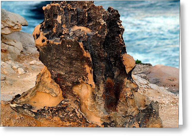 Lithified Greeting Cards - Natures Sculptures II Greeting Card by Patricia Griffin Brett