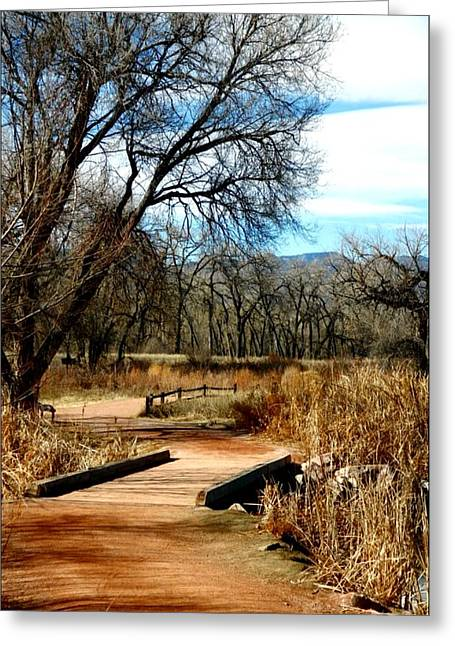 Fountain Creek Nature Center Greeting Cards - Natures Walk Greeting Card by Michelle Frizzell-Thompson