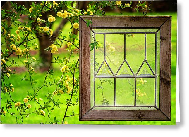 Greg Simmons Greeting Cards - Natures Window Greeting Card by Greg Simmons