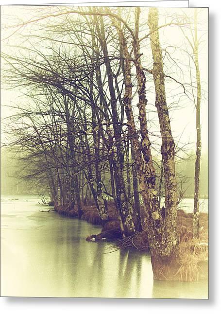 Natures Winter Slumber Greeting Card by Karol Livote