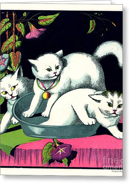 Naughty Cats Play In Tub On Table With Morning Glories Greeting Card by Pierpont Bay Archives