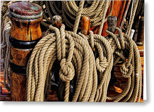 Nautical Knots 17 Oil Greeting Card by Mark Myhaver