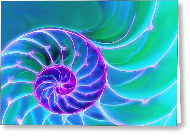 Geometric Artwork Greeting Cards - Nautilus Blue Spiral Greeting Card by Gill Billington