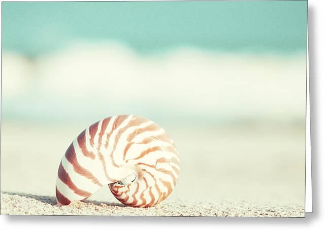 Nautilus Greeting Card by Carolyn Cochrane
