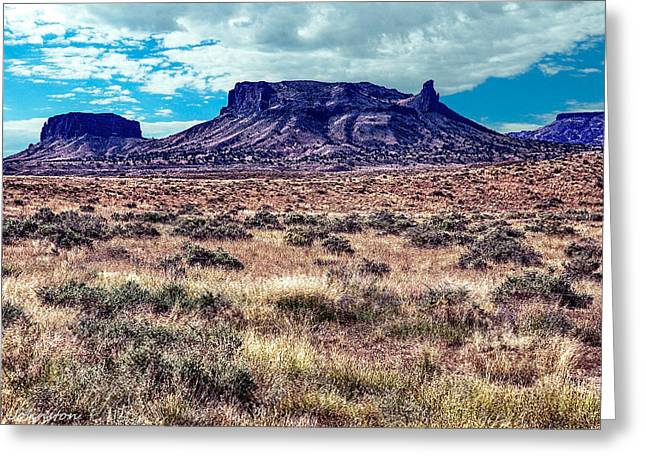 Desertview Greeting Cards - Navajo Reservation Series 1 Greeting Card by  Bob and Nadine Johnston