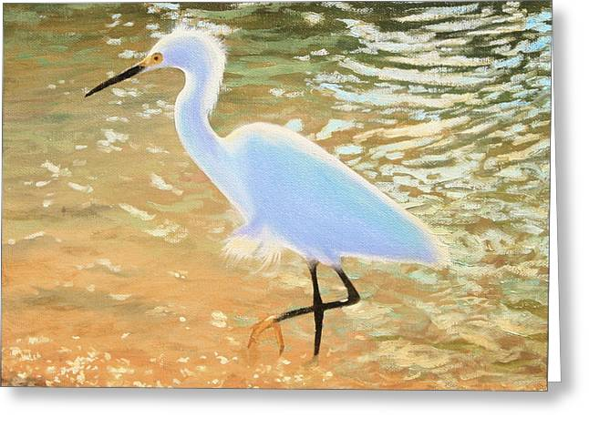 Snowy Egret Greeting Cards - Navigating the Tide Greeting Card by Tim Davis