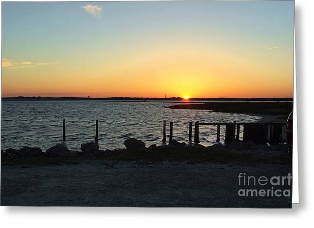 Dogwood Silhouette Greeting Cards - NC Coast Sunset Greeting Card by Stuart Mcdaniel
