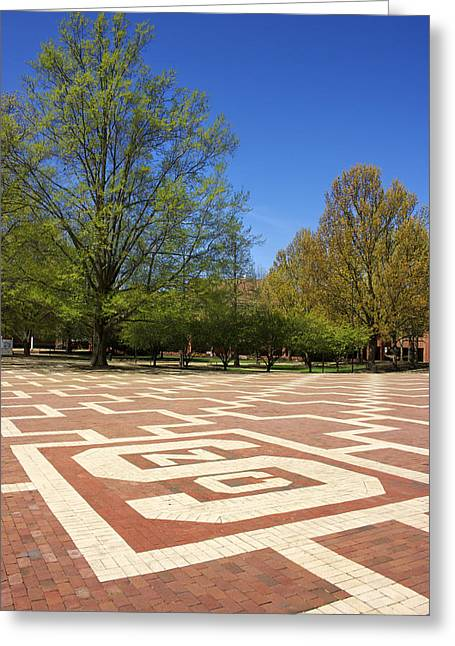 Wolfpack Greeting Cards - NC State Brickyard Greeting Card by Orange Cat Art