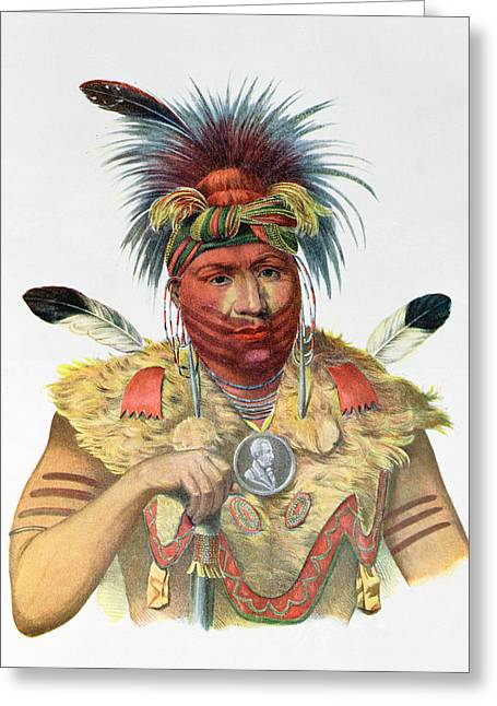 Face Paint Greeting Cards - Ne-sou-a-quoit, A Fox Chief, Illustration From The Indian Tribes Of North America, By Thomas L Greeting Card by Charles Bird King
