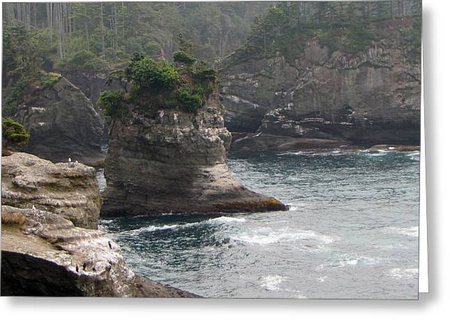 Cape Flattery Greeting Cards - Neah Bay at Cape Flattery II Greeting Card by Roger Reeves  and Terrie Heslop